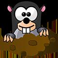 Köstebek