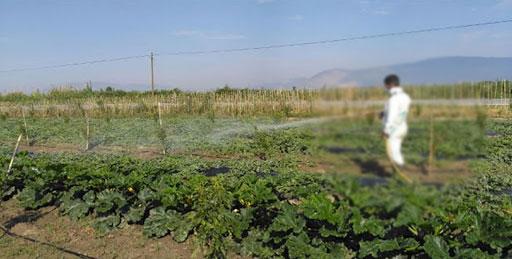 """Turgut Köyü'nde """"tarım"""" desteği"""