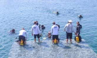 Ekmeksiz'de deniz temizliği yapıldı
